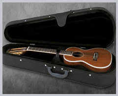 Other Stringed Instrument Cases
