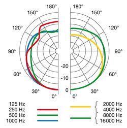 AKG D40 Polar Pattern