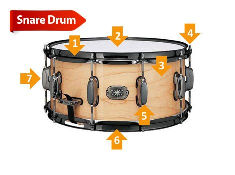 drum buyers guide at americanmusical com rh americanmusical com Snare Drum Black and White snare drum tuning diagram