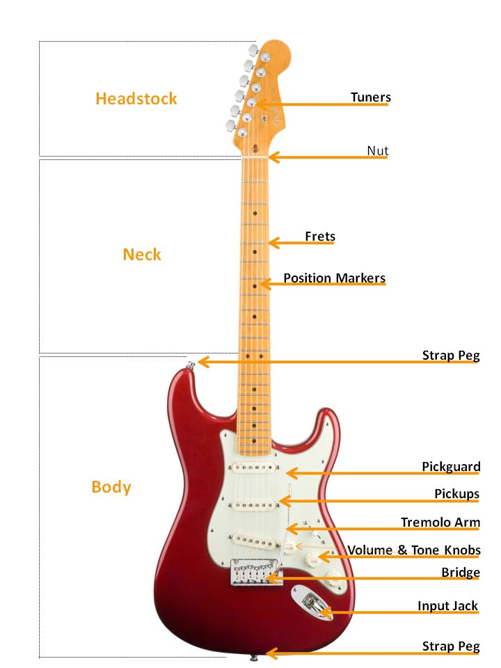 Diagram for Electric Guitar