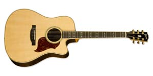 Gibson Acoustic Electric Guitars