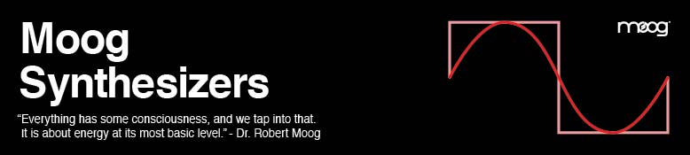 Moog Synthesizers