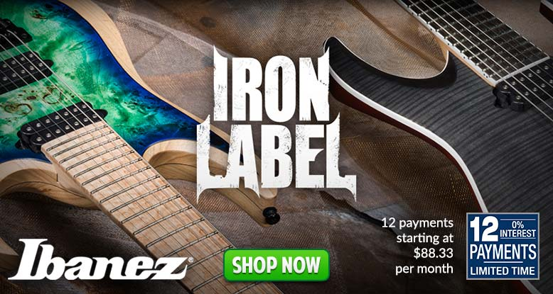 Ibanez 12 Payments