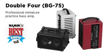 Professional miniature practice bass amp